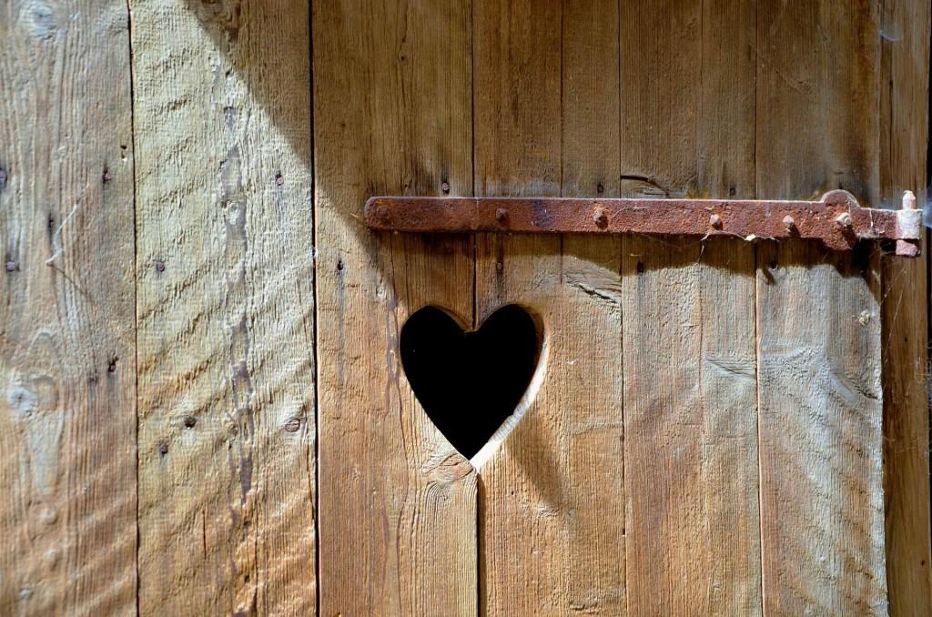dveře se sdrcem